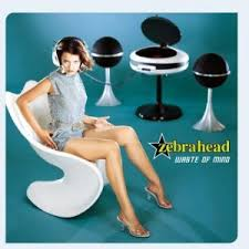 Zebrahead - Waste Of Mind