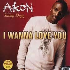 i wanna love you akon