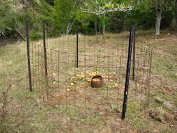 pig traps