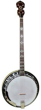 banjo plectrums