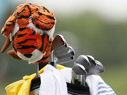 tiger woods headcover