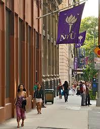 nyu university