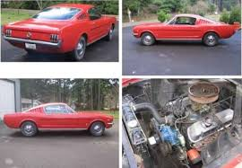 mustang fast back for sale