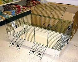 guinea cages