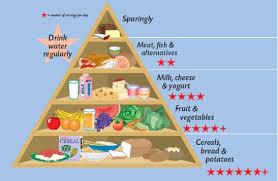 food groups diagram