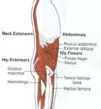 pilates core muscles