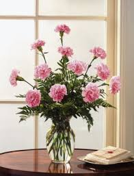 carnation flower arrangements