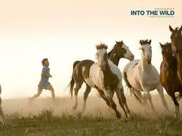 film horse