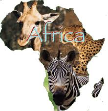 photos from africa