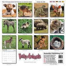animals calendars