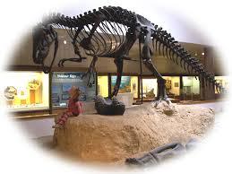 prehistoric museum