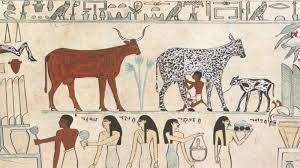 animals in egyptian art