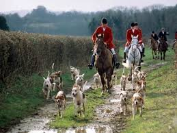 fox hunting picture