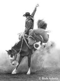 saddle bronc saddle
