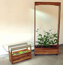 indoor vegetable