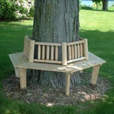 bench around a tree