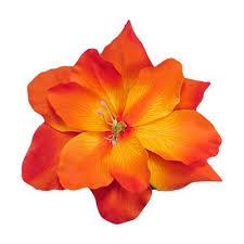 orange hair flowers