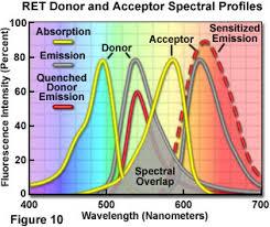 fluorescence emission