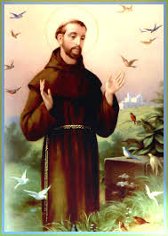 picture of saint francis of assisi