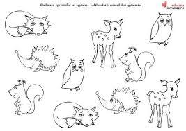 animale salbatice de colorat