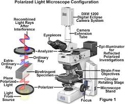 polarized microscope