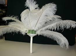 feathers ostrich