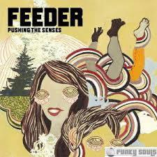 pushing the senses feeder