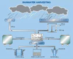 rain water catchment