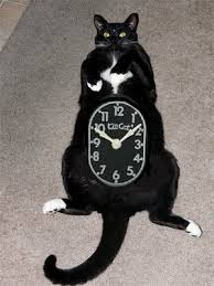 retro cat clock