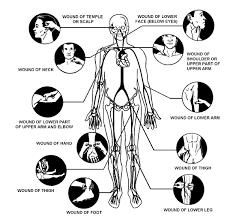 pressure point martial arts