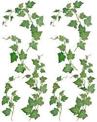 ivy leaf design