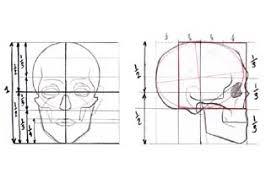 draw human head