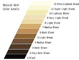 hair highlights chart