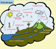 ciclo del agua wikipedia