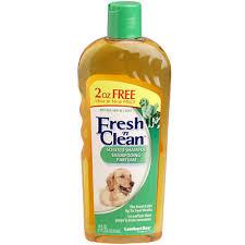 clean shampoo