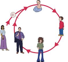 life cycle animals