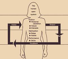 model of human occupation diagram