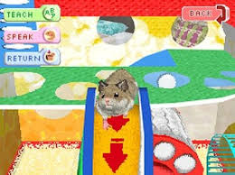 hamsterz ds