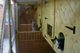 cattery designs