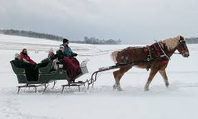 picture of sleigh