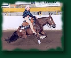 reining quarter horses