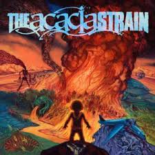 acacia strain continent