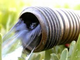hoses garden