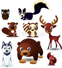 forest animals picture