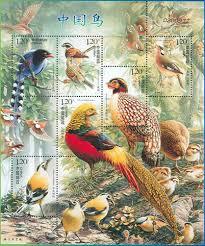 birds china