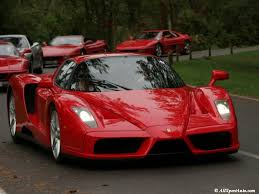 ferrari enzo photos