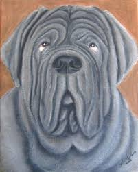 neapolitan mastiff prices