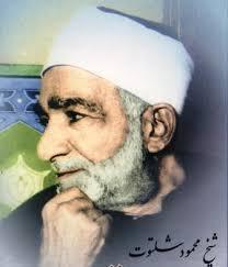 شیخ محمد شلتوت