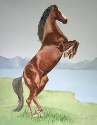 horse mural wallpaper