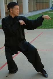 mantis style kung fu